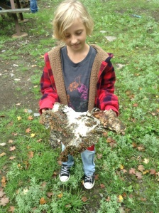 9 year old Sadie found a downed birch with tons of usable bark